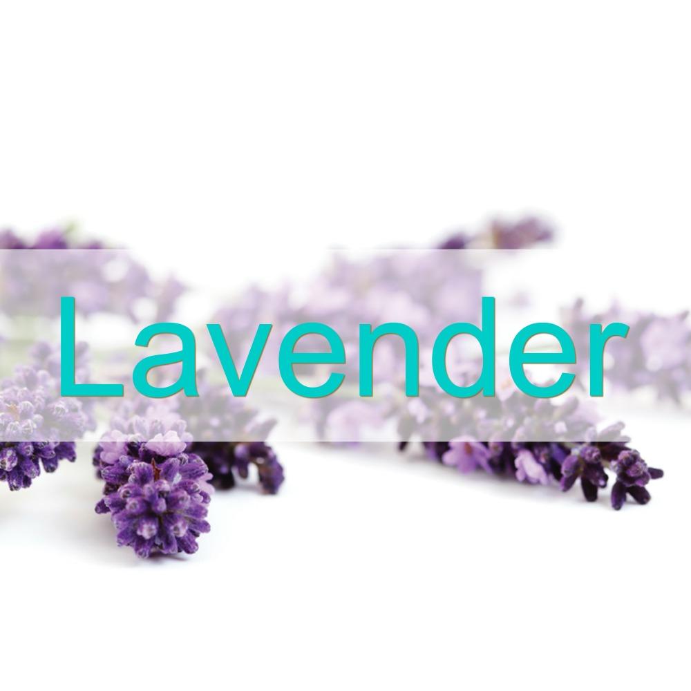 lavender-1000px-lh.jpg
